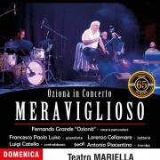 Meraviglioso - Ozionà in Concerto - Fernando Grande